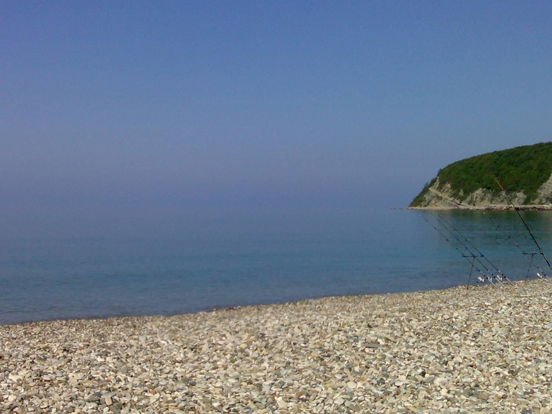 Дикий пляж в новомихайловском фото